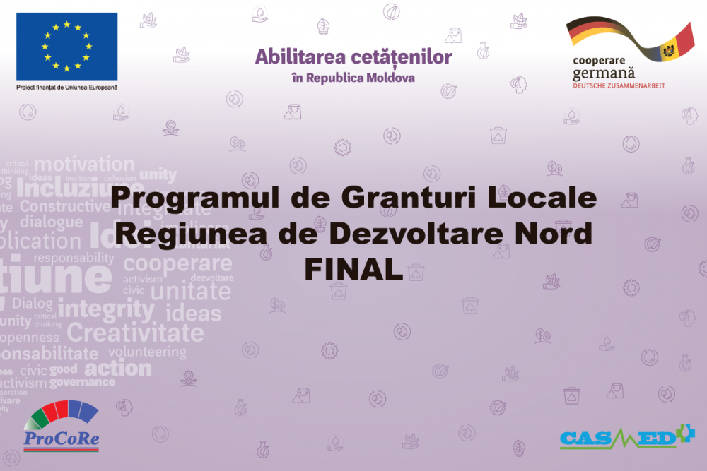 Programul de Granturi Locale RDNord - Lista finaliștilor